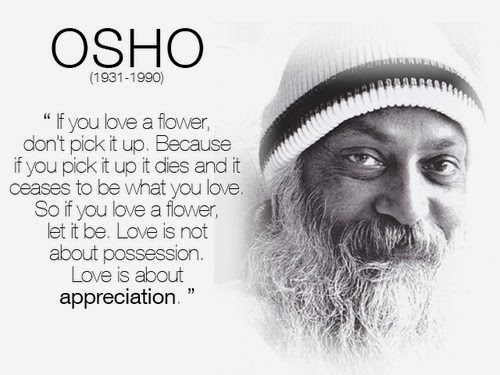 inspiring image and a quote by osho