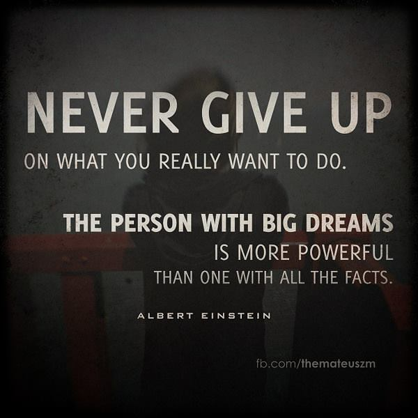 Never give up on what you really want to do. The person with big dreams is more powerful than the one with all the facts.
