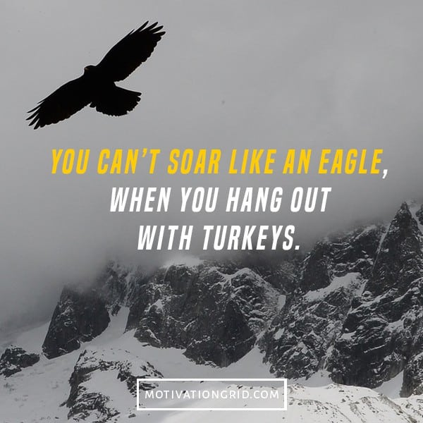 motivational quote, you can't soar like an eagle